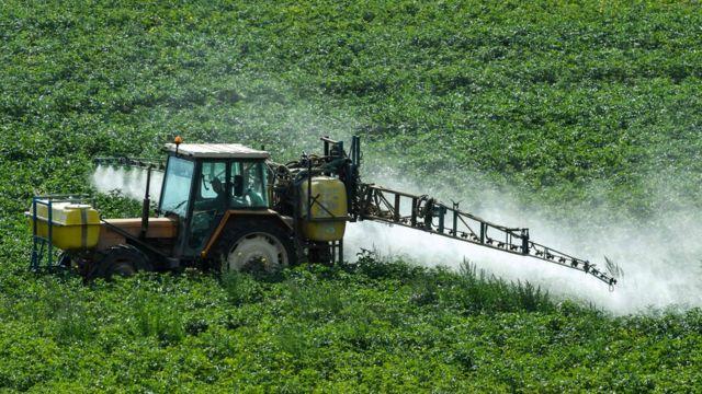 Agroquímicos y Herbicidas: margen de acción*